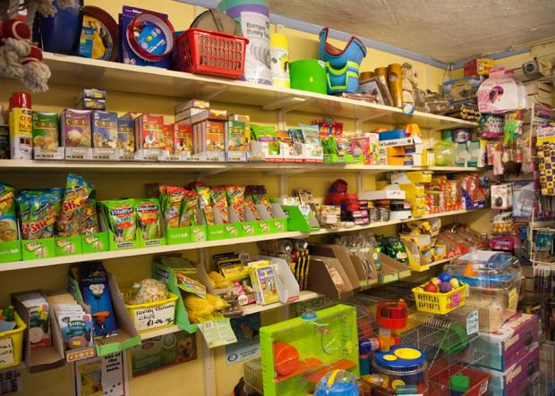 Firthfield Pet Store - Small Animals, Reptiles, Birds Food and Accessories