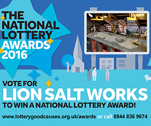Vote for Lion Salt Works