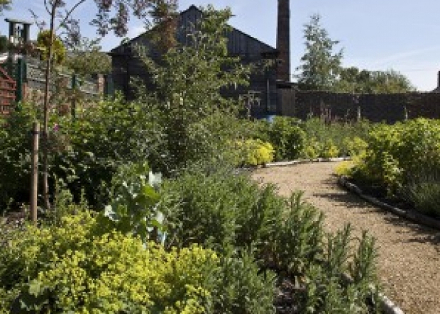 The Butterfly Garden at The Lions Salt Works